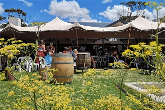 Black Oystercatcher Summer, Wine and Craft Beer Festival
